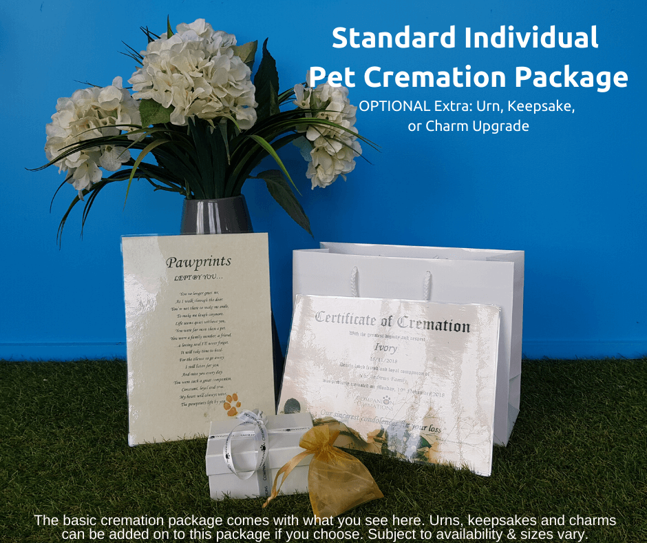Standard Individual Cremation Package