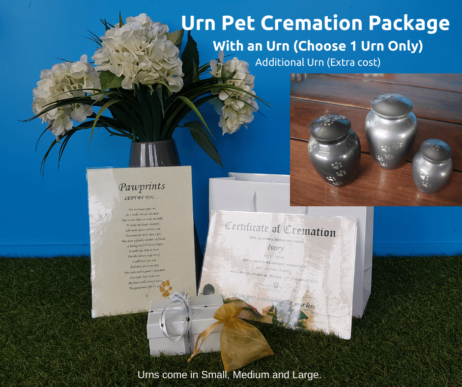 Paws To Heaven Grey Urn Individual Cremation Package