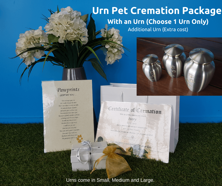 Paws To Heaven Silver Urn Individual Cremation Package - With Urn