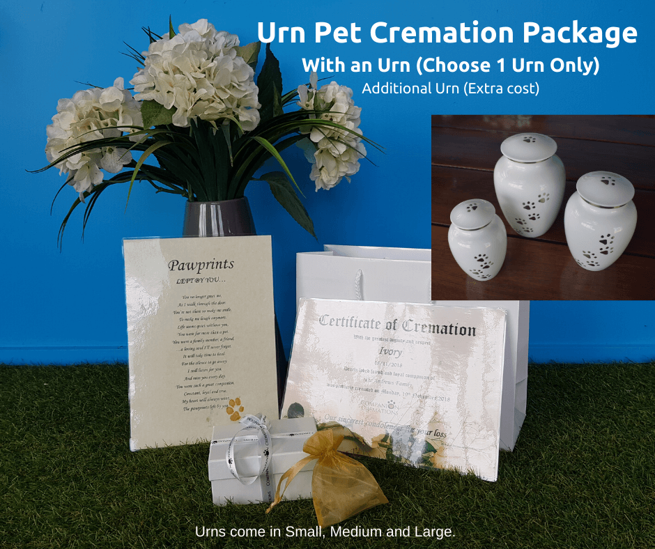 Paws To Heaven White Urn Individual Pet Cremation Package