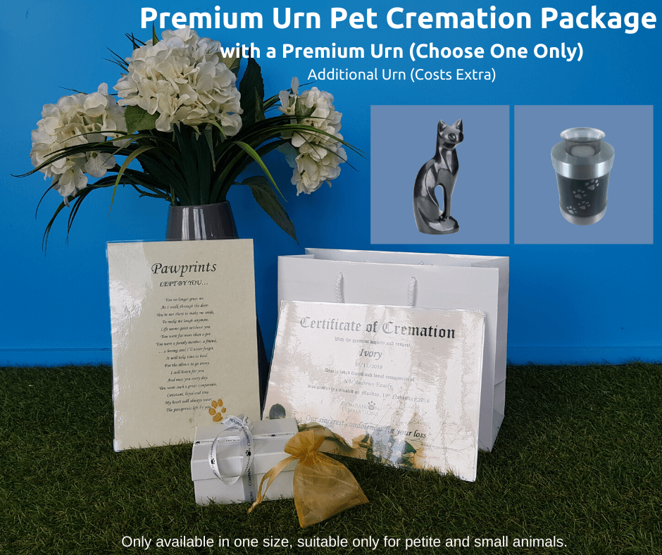 Premium Urn Individual Pet Cremation Package